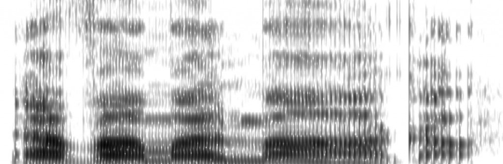 Spektogram_Goruntusu