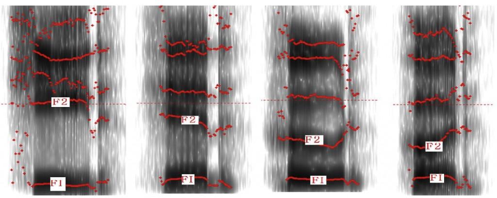 Formant frekanslar spektogram ile görüntülenebilir.